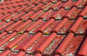 Dachreinigung und Dachsanierung in Gießen und Limburg